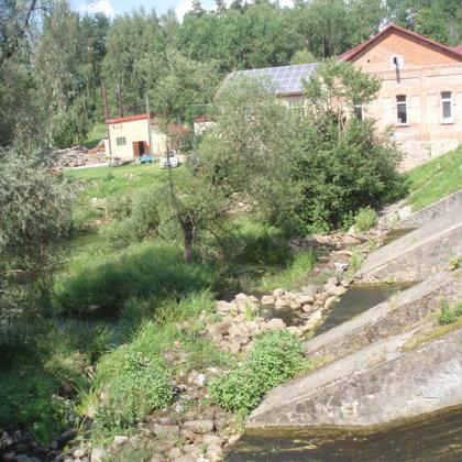Abulā pie Brenguļiem upē viscaur koki var izaugt lieli